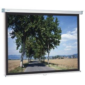 Экран PROJECTA SlimScreen,  180х180 см, 1:1,  настенно-потолочный