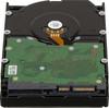 "Жесткий диск WD Gold WD4002FYYZ,  4Тб,  HDD,  SATA III,  3.5"" вид 2"