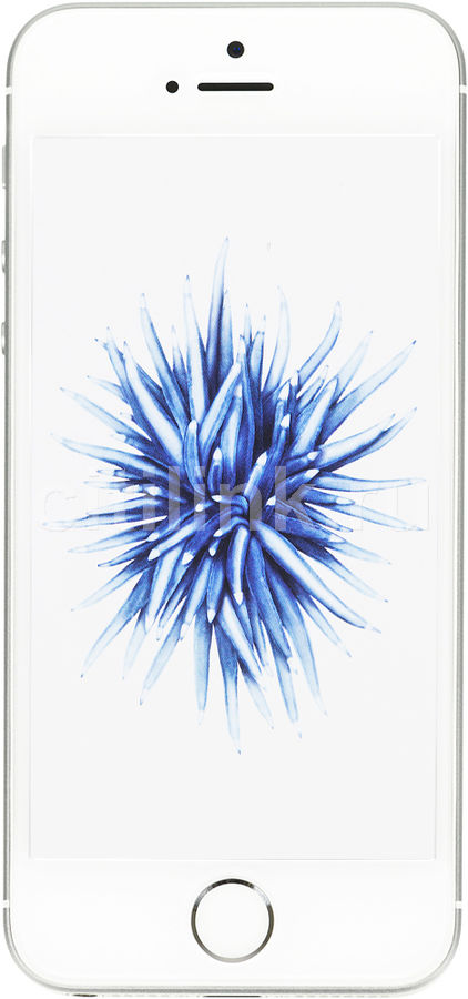 Смартфон APPLE iPhone SE MLLP2RU/A  16Gb, серебристый
