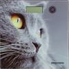 Напольные весы REDMOND RS-735, до 180кг, цвет: рисунок [rs-735 (кошка)] вид 1