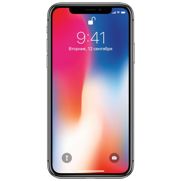 Смартфон APPLE iPhone X 256Gb,  MQAF2RU/A,  серый