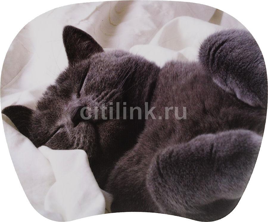 Коврик для мыши PC PET MP-TOM TURBO MP-TMG Cat рисунок [mp-tmgc turbo (grey cat)]